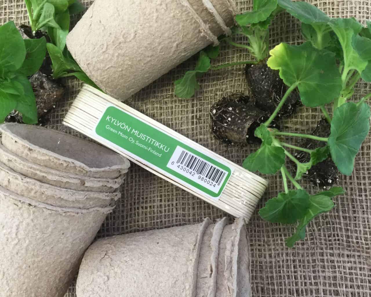 Kesäkukkien pistokkaista kasvatat itse edullisesti