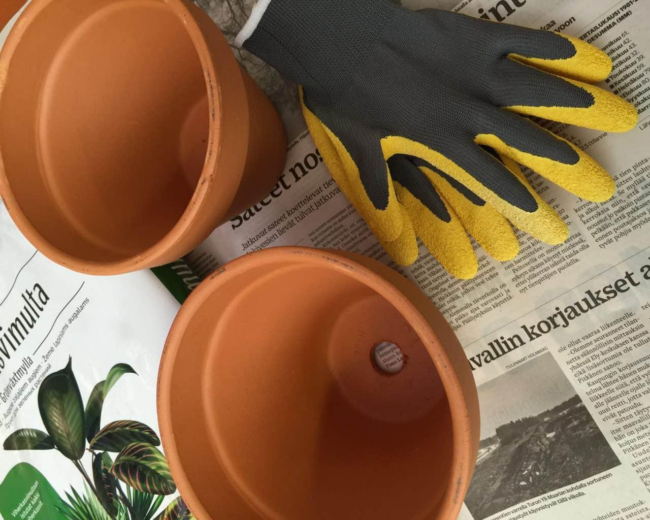 Varaa mullanvaihtoon vaikka sanomalehteä suojaksi, uusi hieman suurempi ruukku, viherkasvimultaa tai kukkamultaa ja hanskat