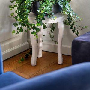 Muratti puhdistaa huoneilmaa ja soveltuu myös ulkoistutuksiin