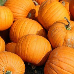 Kurpitsan voi kovertaa syksyllä lyhdyksi