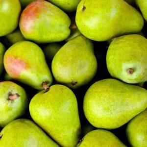 Päärynäpuumme tulevat kotimaisilta taimistoilta