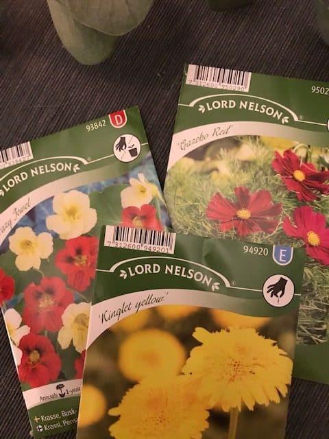 Lord Nelson annossiemenistä kylvät kesän upeimmat kukat