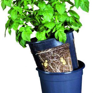 Kasvata omat perunat ja juurekset uudessa PotatoPot viljelyruukussa