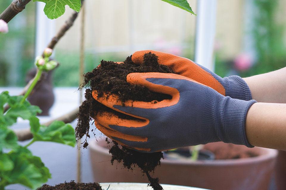 Alkuvuodesta ja keväällä kannattaa upottaa kädet multaan ja kylvää erilaisia siemeniä