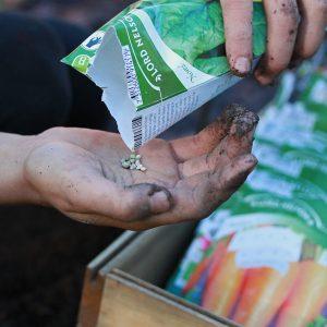 Nelson Gardenin annossiemenvalikoimassa vihannesten, yrttien ja kesäkukkien siemenet