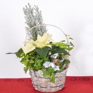 Kukkatalosta laaja valikoima valmiita istutuksia perinteisestä moderniin