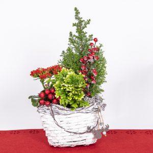 Kaunis tulilatva, sypressi, mähkä ja koristeet pajukassikorissa